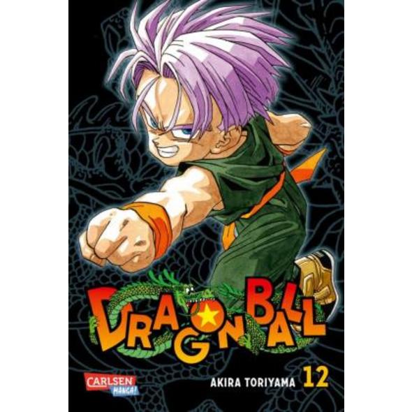 Dragon Ball Massiv 12